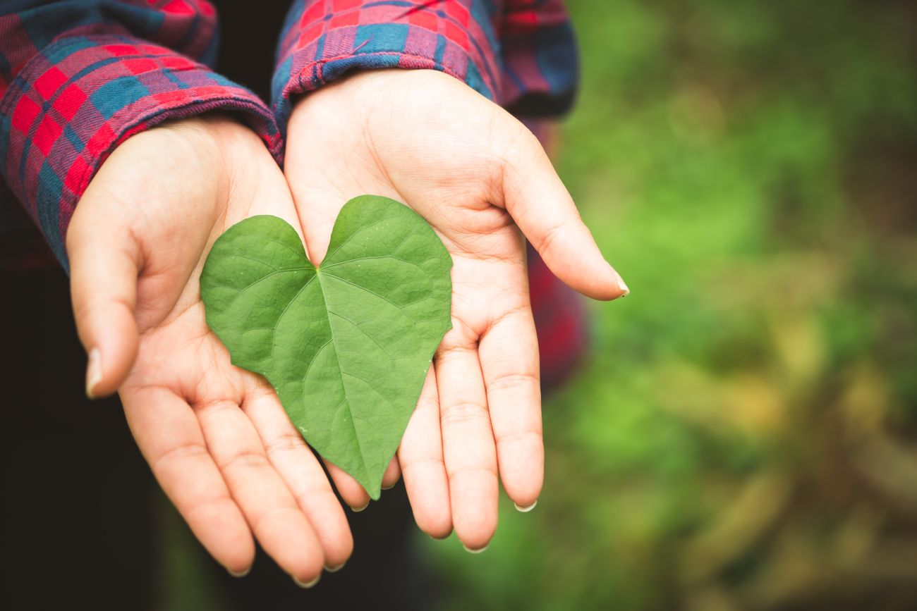 Leaf Heart in Woman's Hands