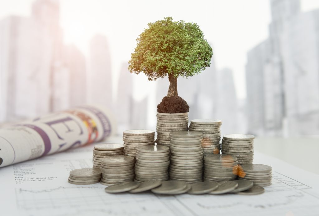 Coins with Mini Money Tree on Top