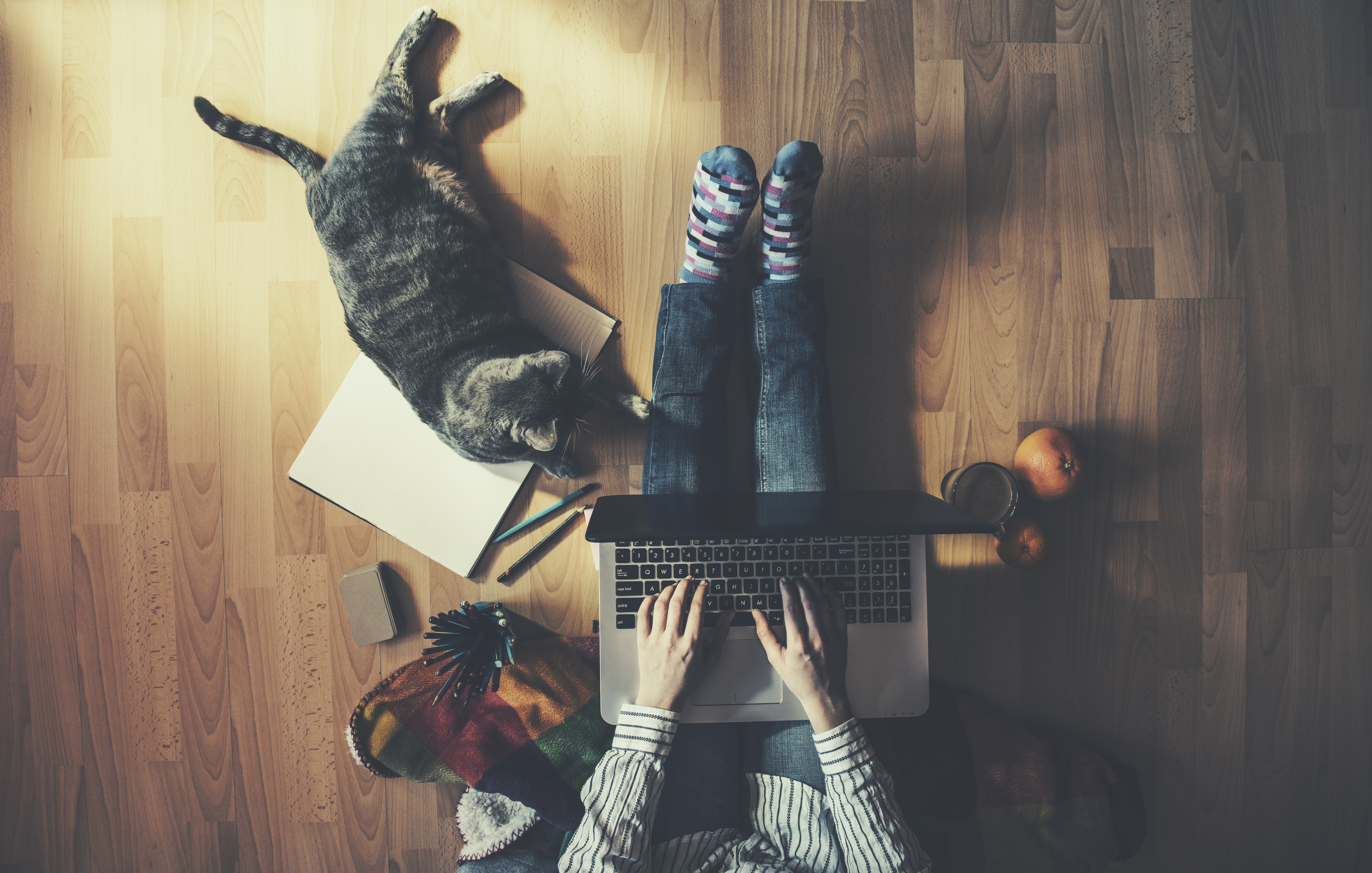 Woman Working from Home with Cat