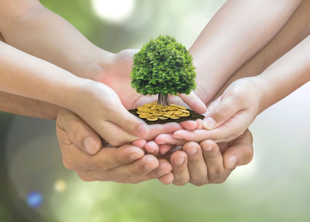 Hands Holding a Money Tree