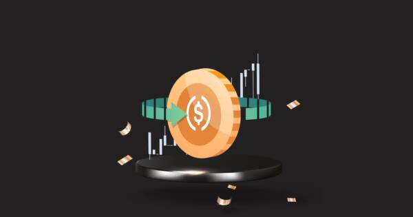 What Is Stablecoin? (And Should You Invest In It?)